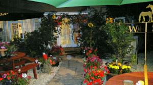 Hayleaze front Garden7